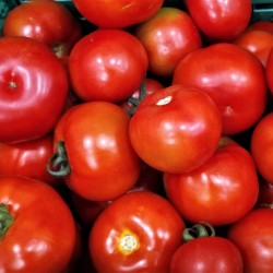 Tomates Rondes - (500 g)