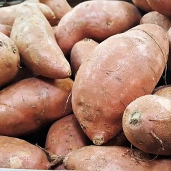 Patate douce - (1 kg)